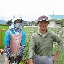 豊富な品数・高品質・低価格な国産品に自信あり。写真:いぐさ生産農家「天津さん」